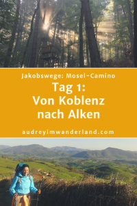 #moselcamino #deutschland #wanderung #fernwanderung #wandern #fernwandern #rucksack #wanderblog #wanderblogger #outdoorblog #rlp #rheinlandpfalz #wald #mosel #läuftbeiihr