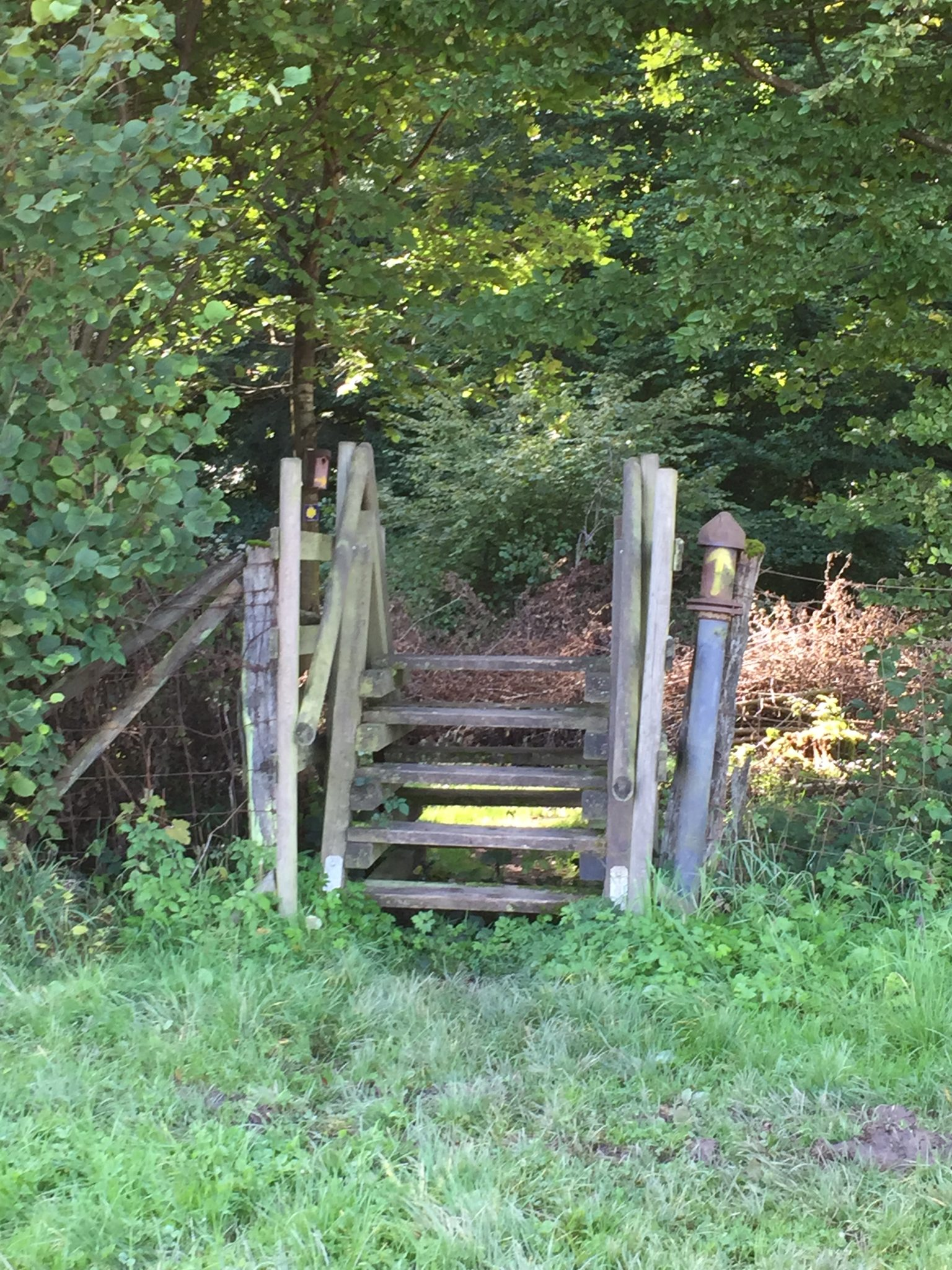 Mosel Camino Etappe 1, Stolzenfels Alken, Weg über Leiter