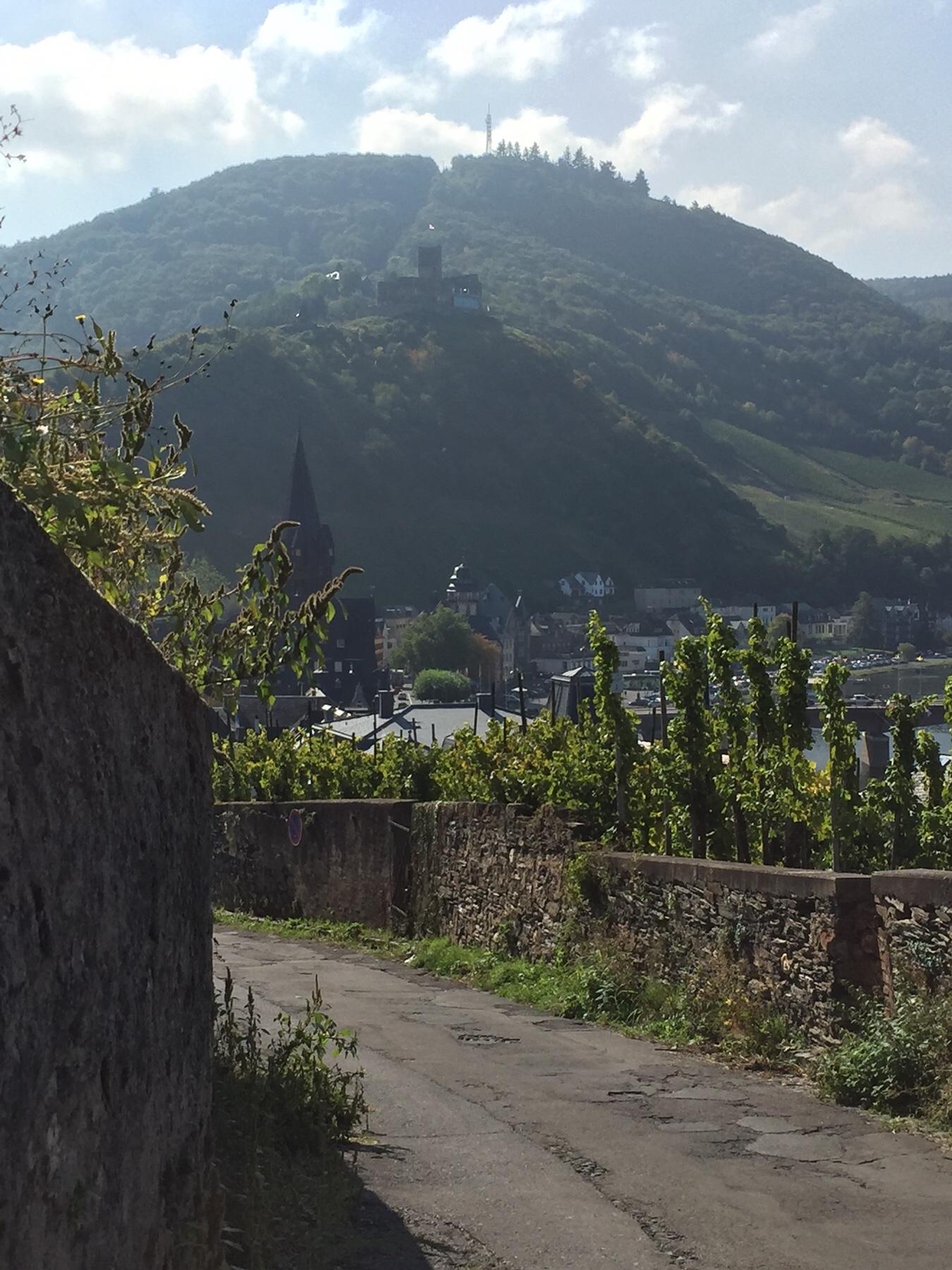 Mosel-Camino kurz vor Bernkastel, auf dem Weg nach Klausen