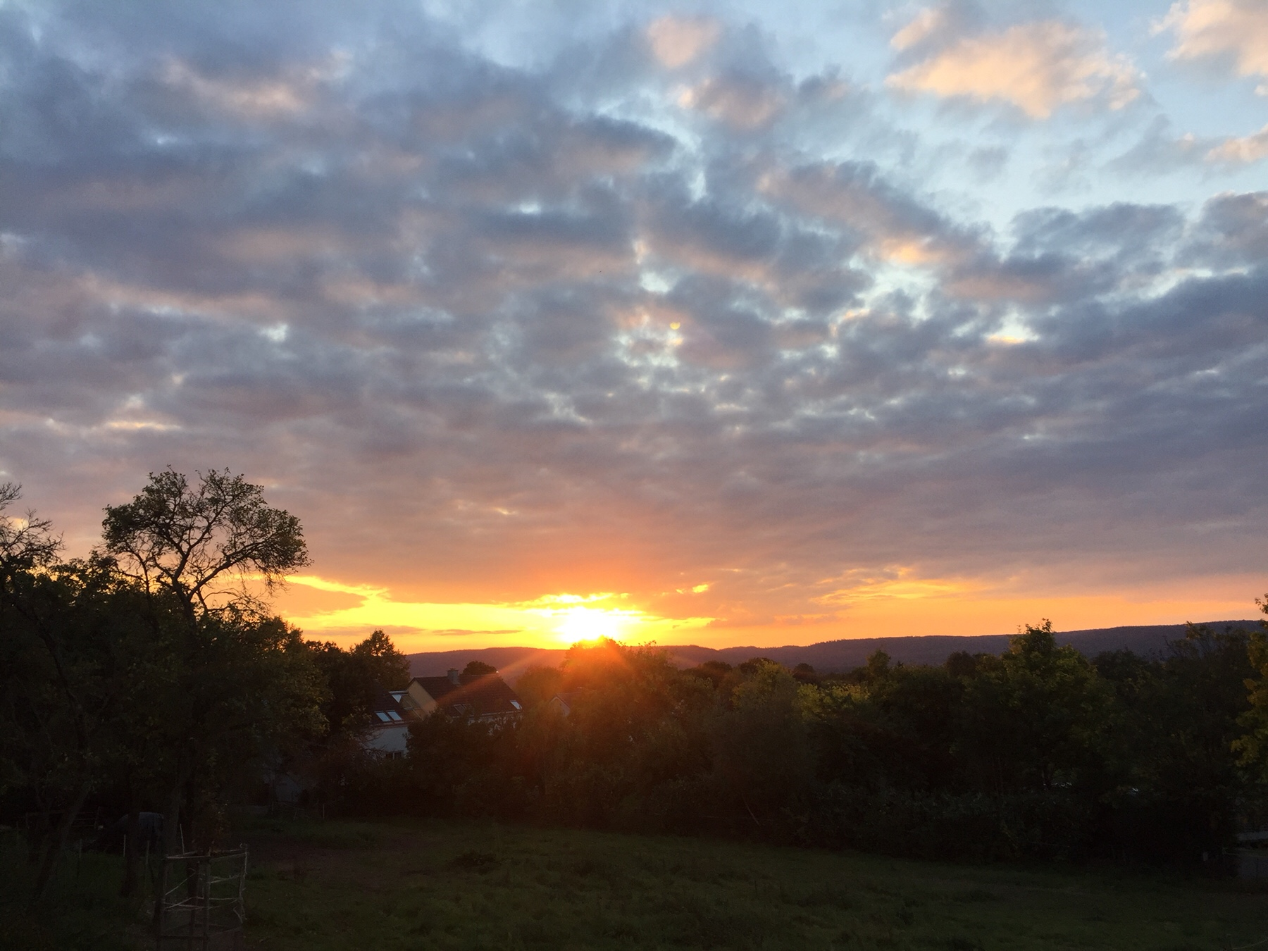 Sonnenuntergang hinter Klausen am Mosel-Camino