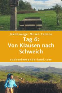 #jakobsweg #moselcamino #deutschland #wanderung #fernwanderung #wandern #fernwandern #rucksack #wanderblog #wanderblogger #outdoorblog #rlp #rheinlandpfalz #wald #mosel #läuftbeiihr