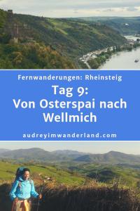 #rheinsteig #deutschland #wanderung #fernwanderung #wandern #fernwandern #rucksack #wanderblog #wanderblogger #outdoorblog #rlp #rheinlandpfalz #wald #rhein #läuftbeiihr