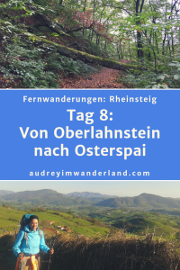 Tag 8 auf dem Rheinsteig schickt mich auf Trimmdichpfaden durch die grüne Hölle, vorbei an Füchsen und brennenden Hexen beinahe ins falsche Hotel. #rheinsteig #deutschland #wanderung #fernwanderung #wandern #fernwandern #rucksack #wanderblog #wanderblogger #outdoorblog #rlp #rheinlandpfalz #wald #rhein #läuftbeiihr