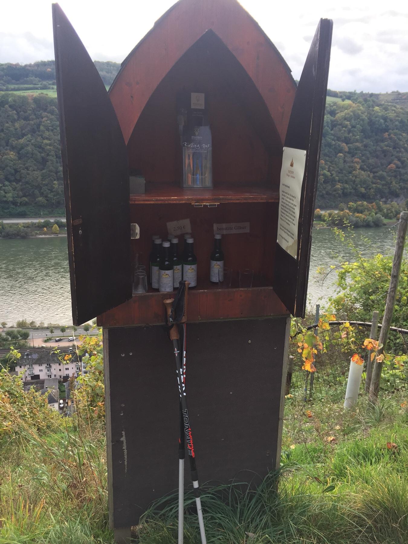 Weintresor vor Kaub