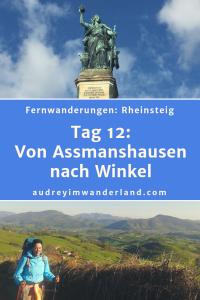 Rheinsteig - Tag 12: Von Assmanshausen nach Winkel #rheinsteig #deutschland #wanderung #fernwanderung #wandern #fernwandern #rucksack #wanderblog #wanderblogger #outdoorblog #rlp #rheinlandpfalz #wald #rhein #läuftbeiihr