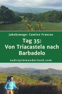 Camino Frances - Tag 35: Von Triacastela nach Barbadelo #caminodesantiago #camino #caminofrances #Santiago #fernwanderung #wandern #spanien #pilgern #santiagodecompostella #finisterre #fisterra #galicien #galicia #outdoor #outdoorblog #outdoorblogger #reiseblogger #wanderblogger #wanderblog #reiseblog #läuftbeiihr