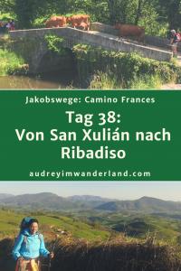 Camino Frances - Tag 38: Von San Xulián nach Ribadiso #caminodesantiago #camino #caminofrances #Santiago #fernwanderung #wandern #spanien #pilgern #santiagodecompostella #finisterre #fisterra #galicien #galicia #outdoor #outdoorblog #outdoorblogger #reiseblogger #wanderblogger #wanderblog #reiseblog #läuftbeiihr
