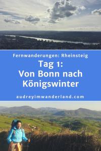 Rheinsteig Tag 1: Von Bonn nach Königswinter #rheinsteig #deutschland #wanderung #fernwanderung #wandern #fernwandern #rucksack #wanderblog #outdoorblog #nrw #wald #rhein