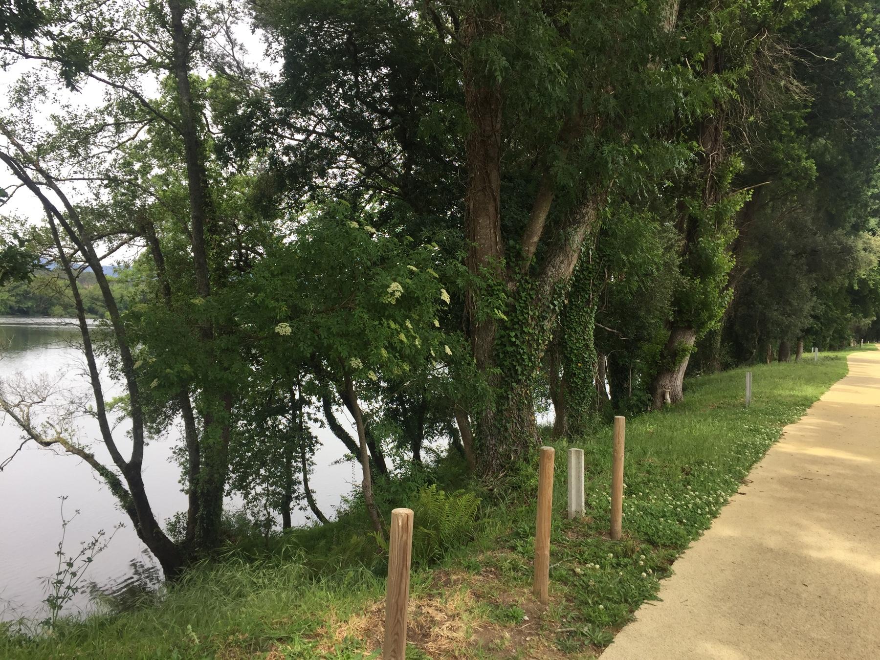 Alternative zum Caminho: Am Fluss entlang statt durch die Dörfer