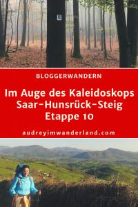 Fernwanderung: Saar-Hunsrück-Steig Etappe 10 von Börfink nach Morbach #saarhunsrücksteig #bloggerwandern #rlp #rheinlandpfalz #hunsrück #nationalpark #deutschland #wanderung #fernwanderung #wandern #fernwandern #wanderblog #wanderblogger #läuftbeiihr