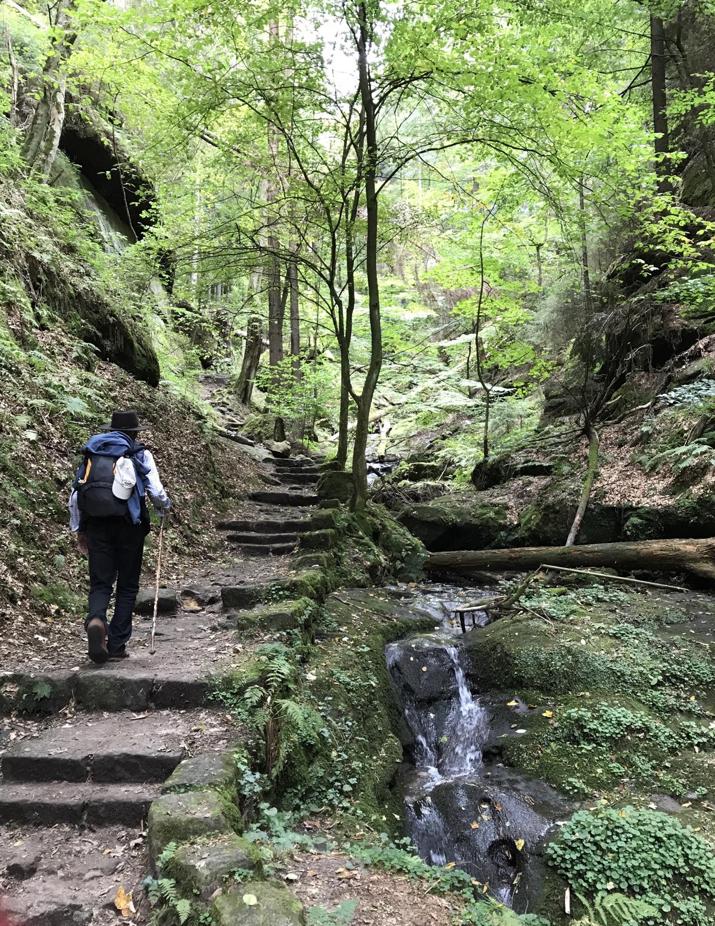 Auf dem Weg nach Hohnstein Etappe 2 Malerweg