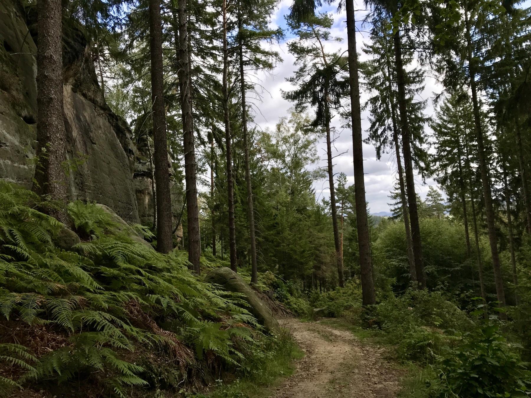 Malerweg Etappe 3, Hohnstein Altendorf