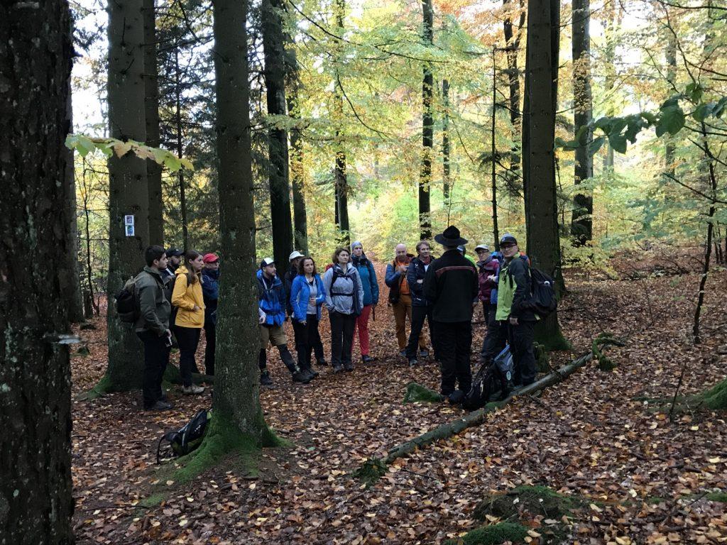 Etappe 10 Saar-Hunsrück-Steig