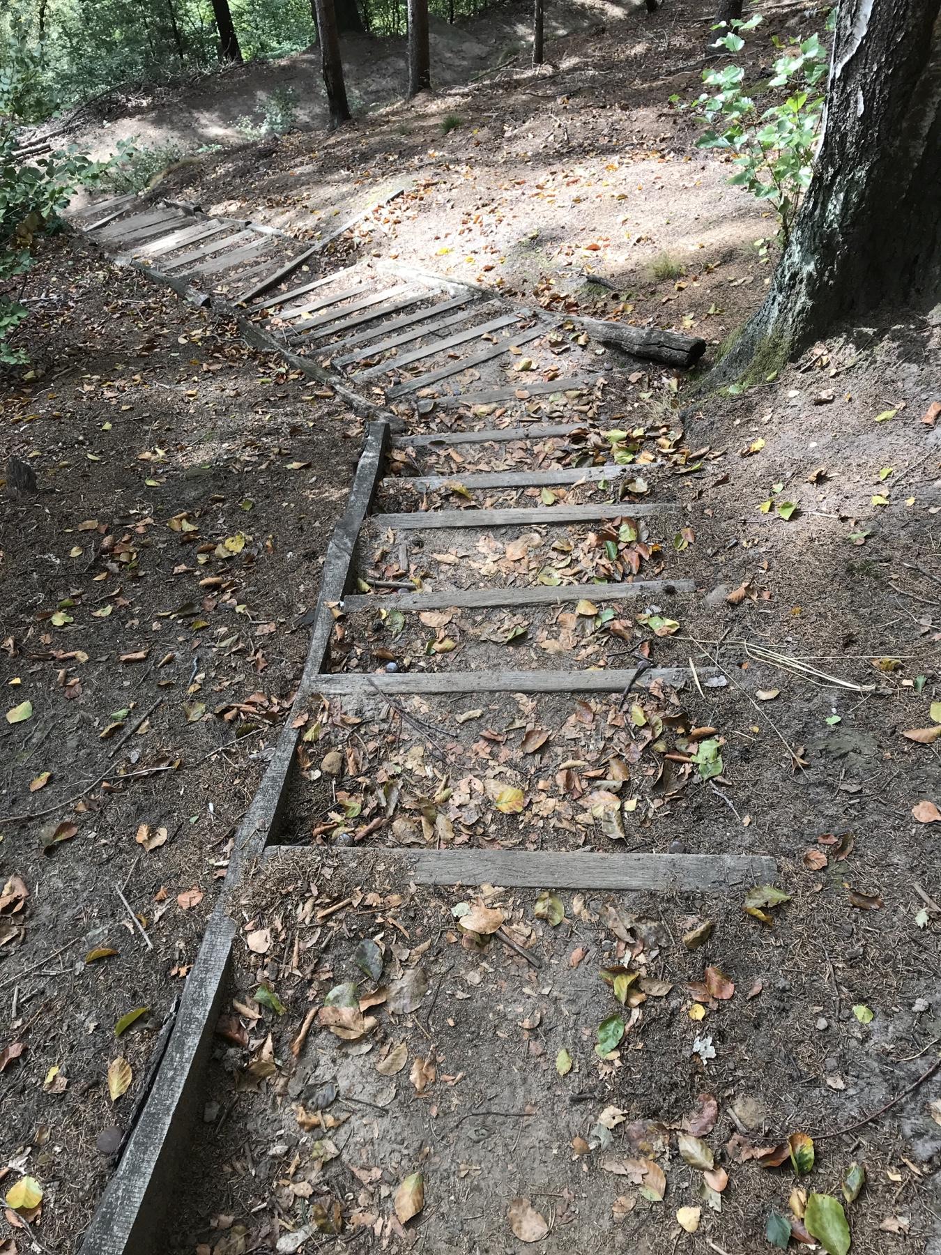 Treppen abwärts Malerweg Etappe 5 Neumannmühle Schmilka