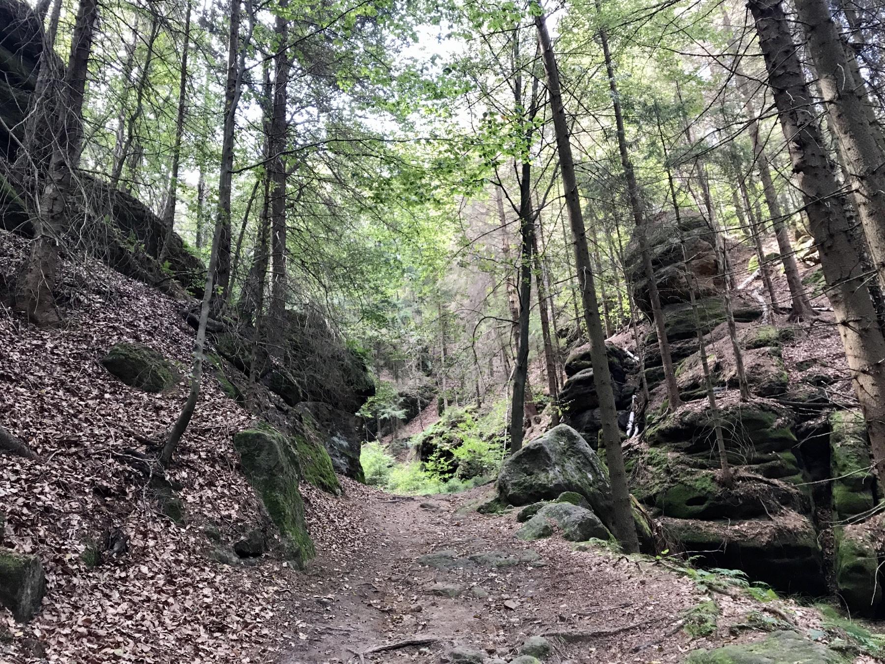 Die Wolfsschlüchte Malerweg Etappe 5 Neumannmühle Schmilka