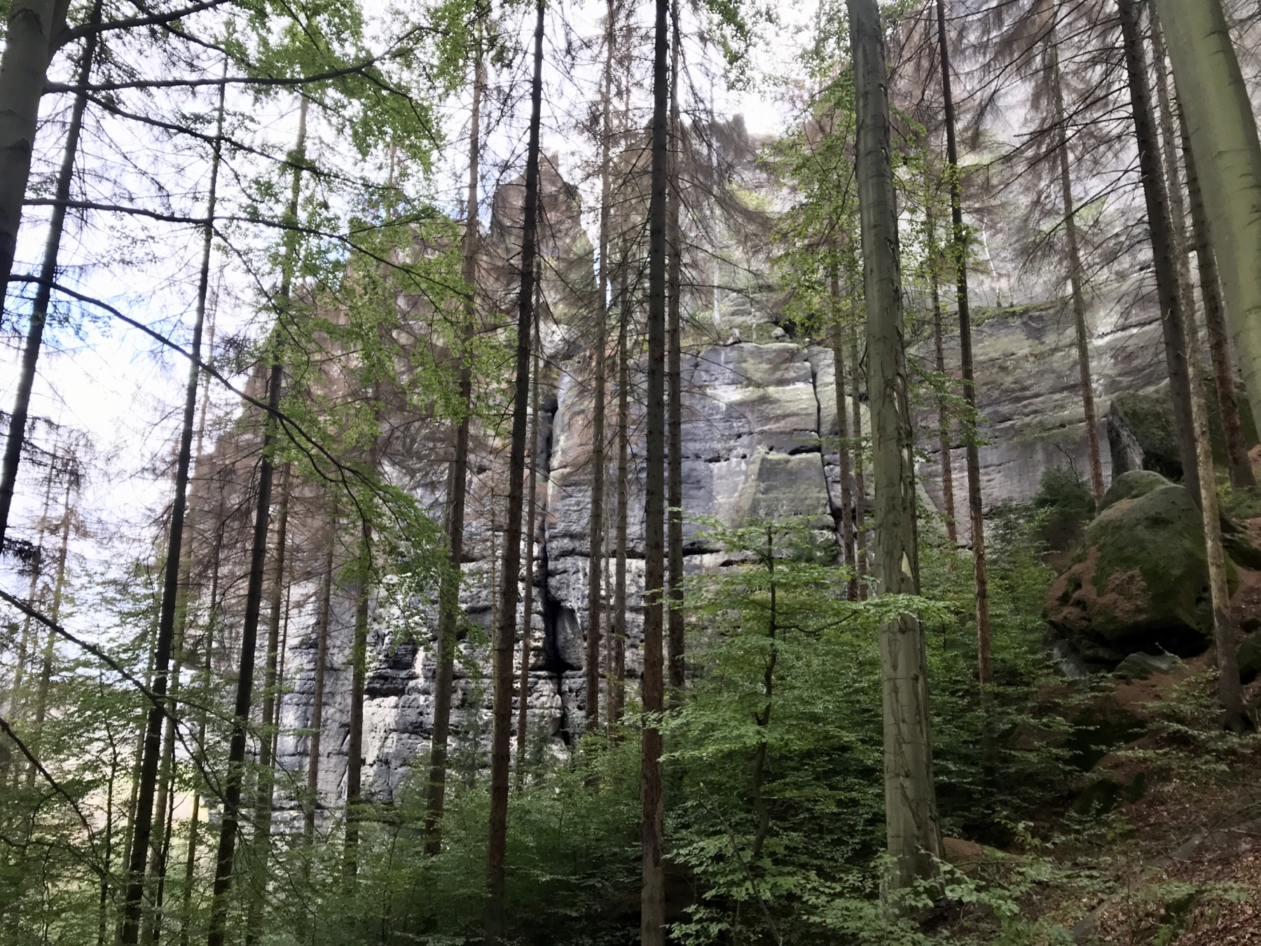 Malerweg Etappe 5 Neumannmühle Schmilka
