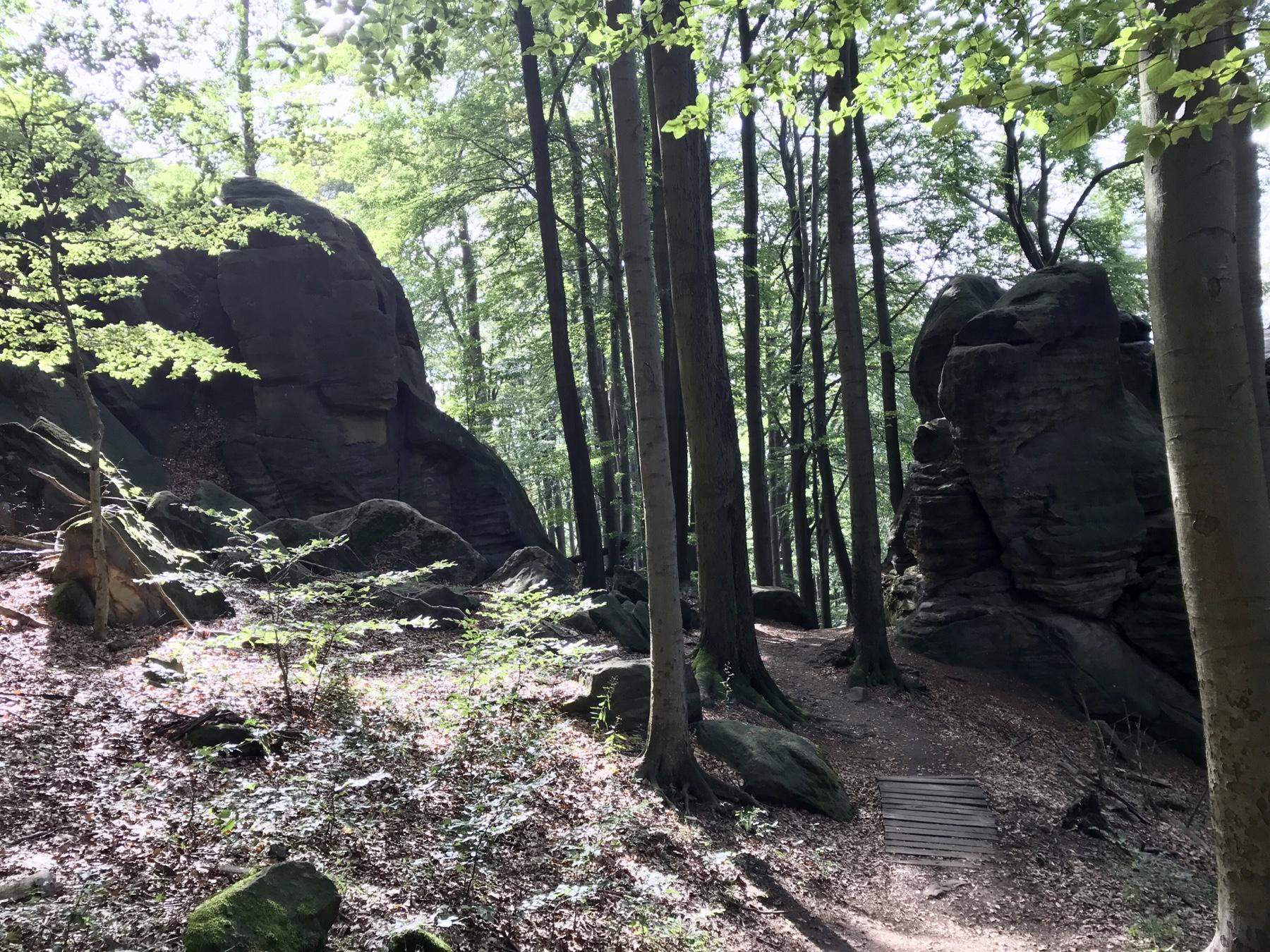 Wegidylle Malerweg Etappe 5 Neumannmühle Schmilka