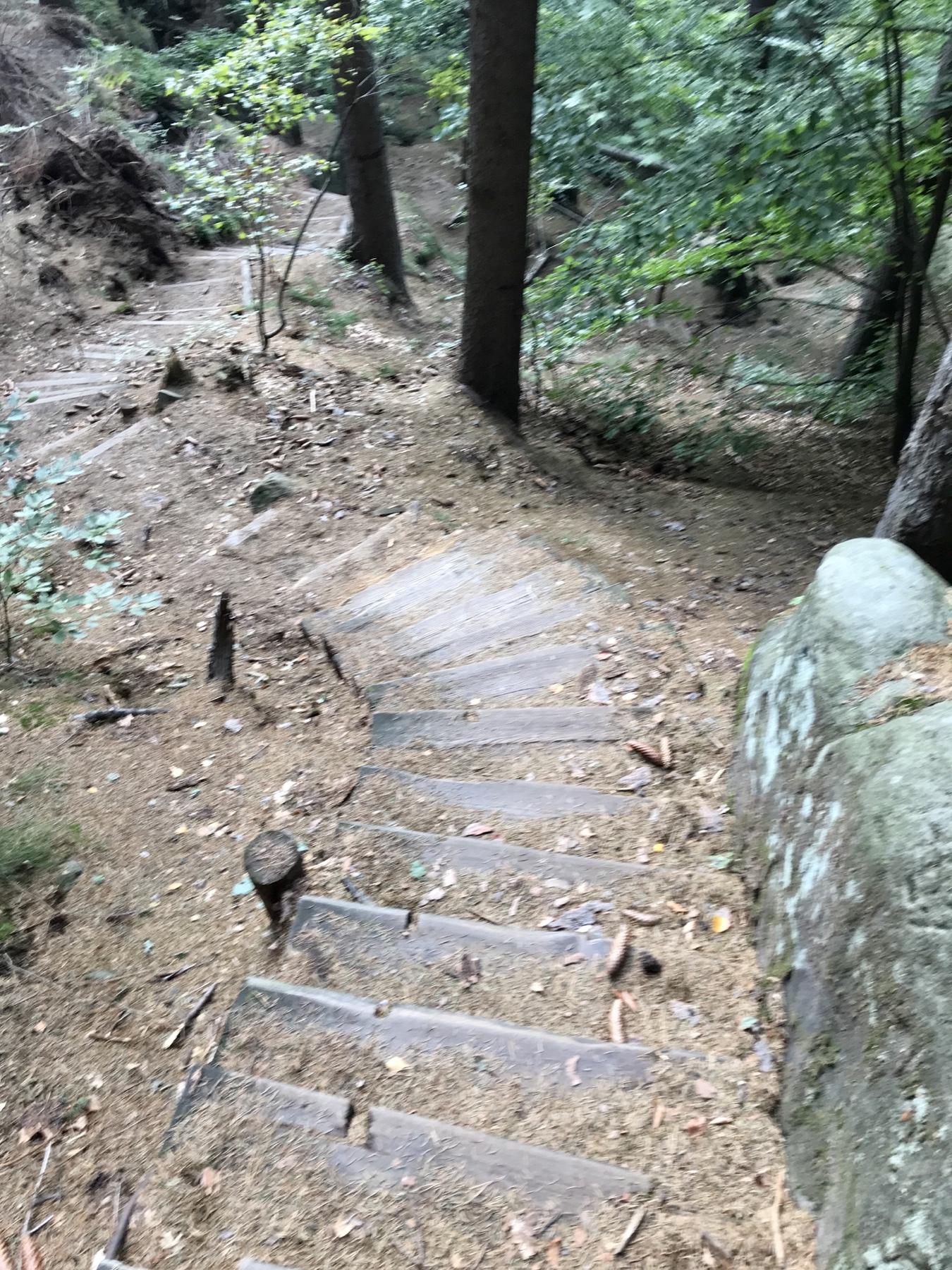 Stufen hinunter nach Schmilka Malerweg Etappe 5