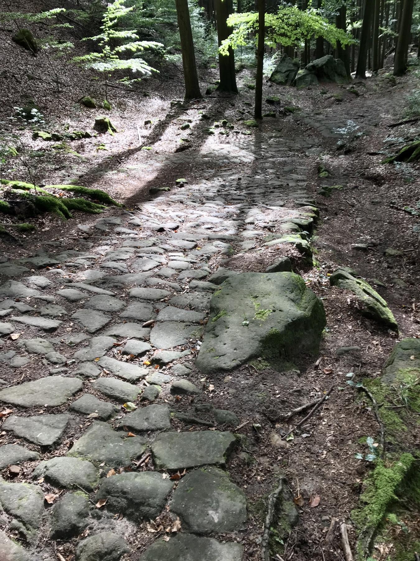 Kopfsteinpflaster kurz vor Schmilka Malerweg Etappe 5