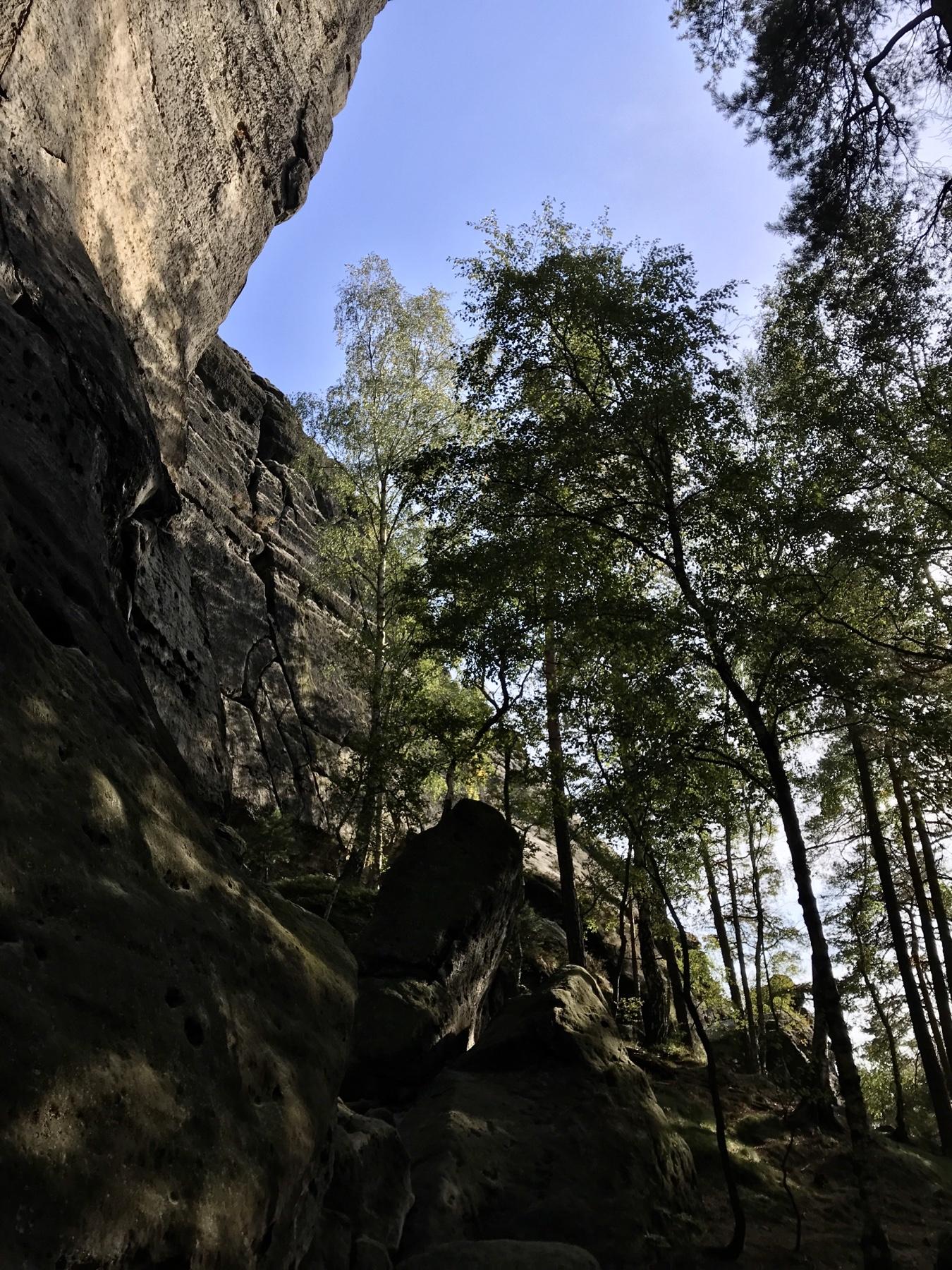 Abstieg vom Gohrisch, Malerweg Etappe 6