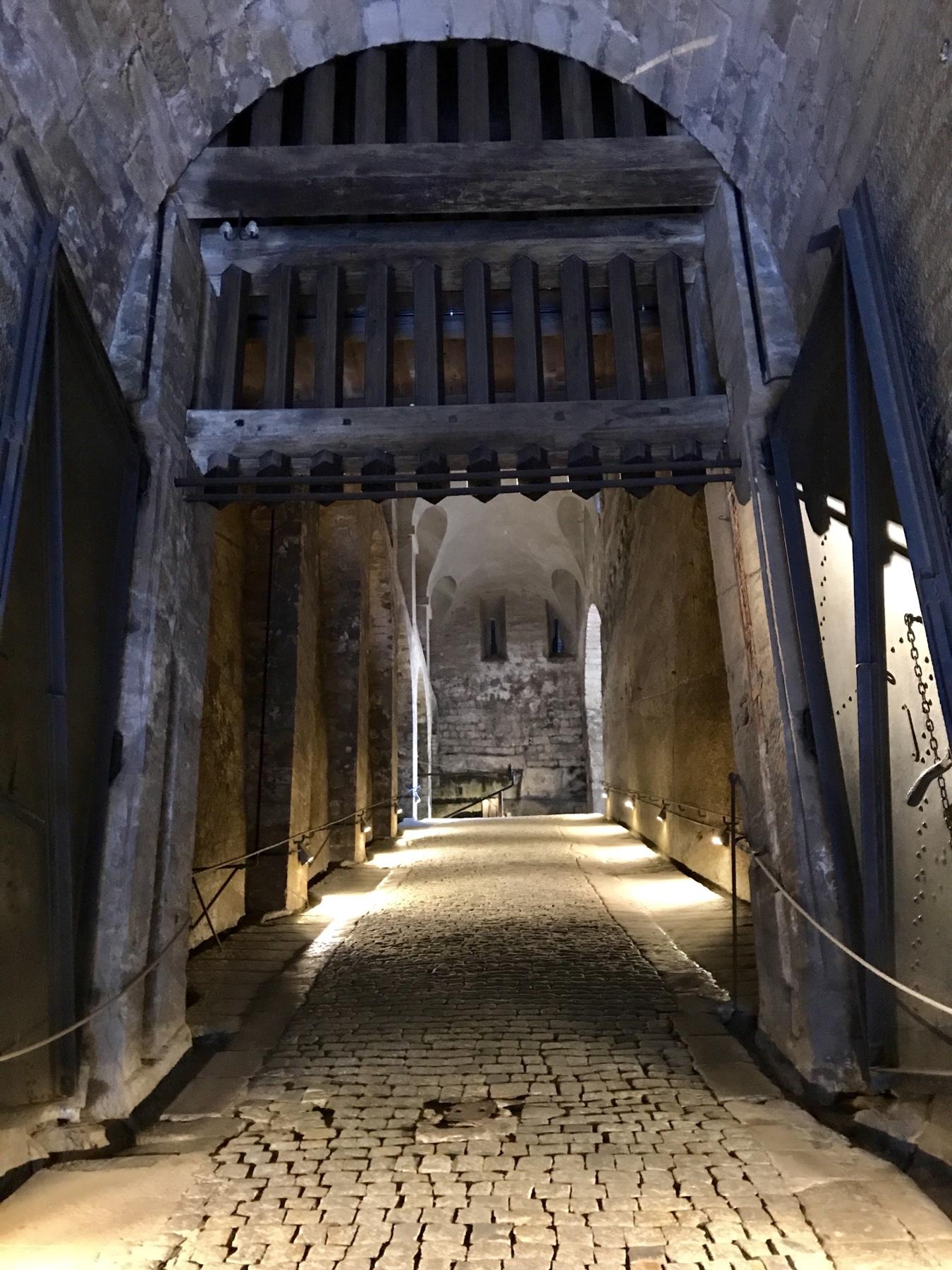 Dunkle Appareille, Festung Königstein, Malerweg