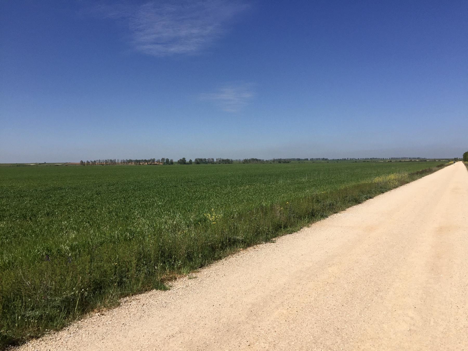 Meseta Camino Frances Stille Weite Gedankengänge