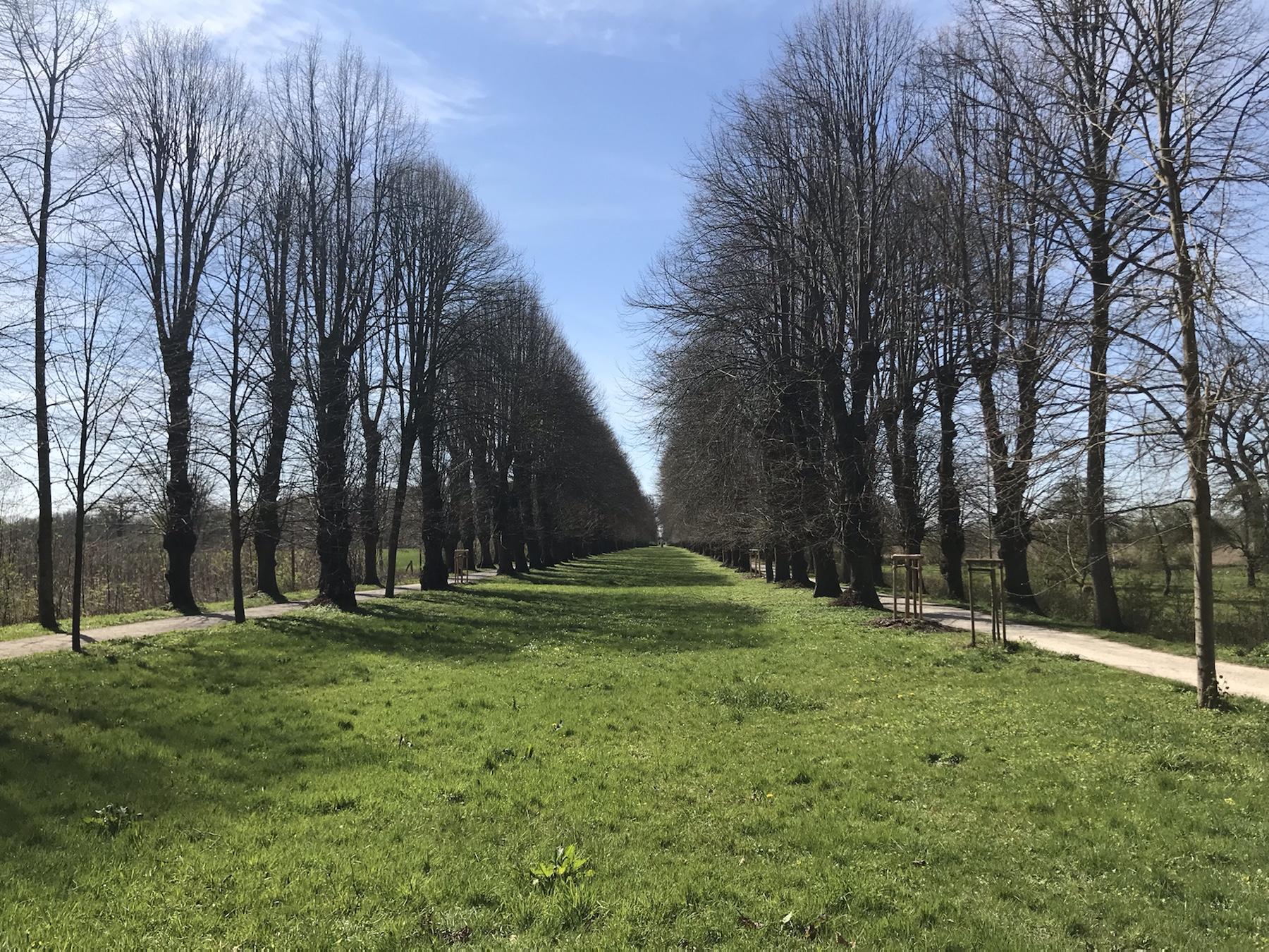 Lindenallee Gutshaus Jerbek