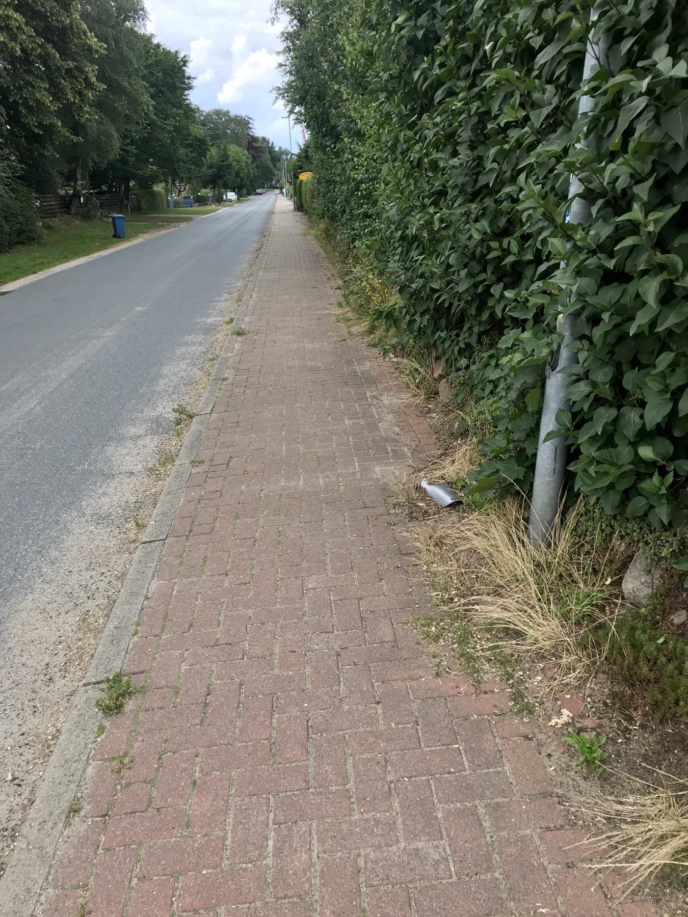 Stormarnweg Etappe 1 von Witzhave nach Großensee