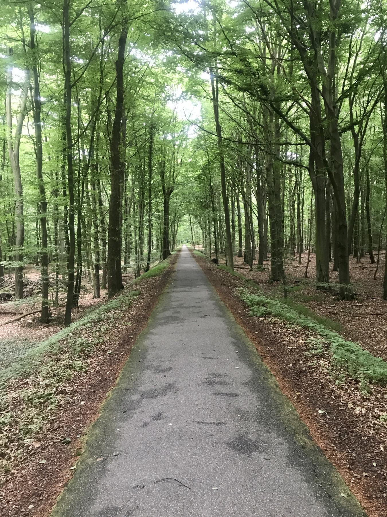 Stormarner BahnRadWeg Route C von Glinde nach Trittau