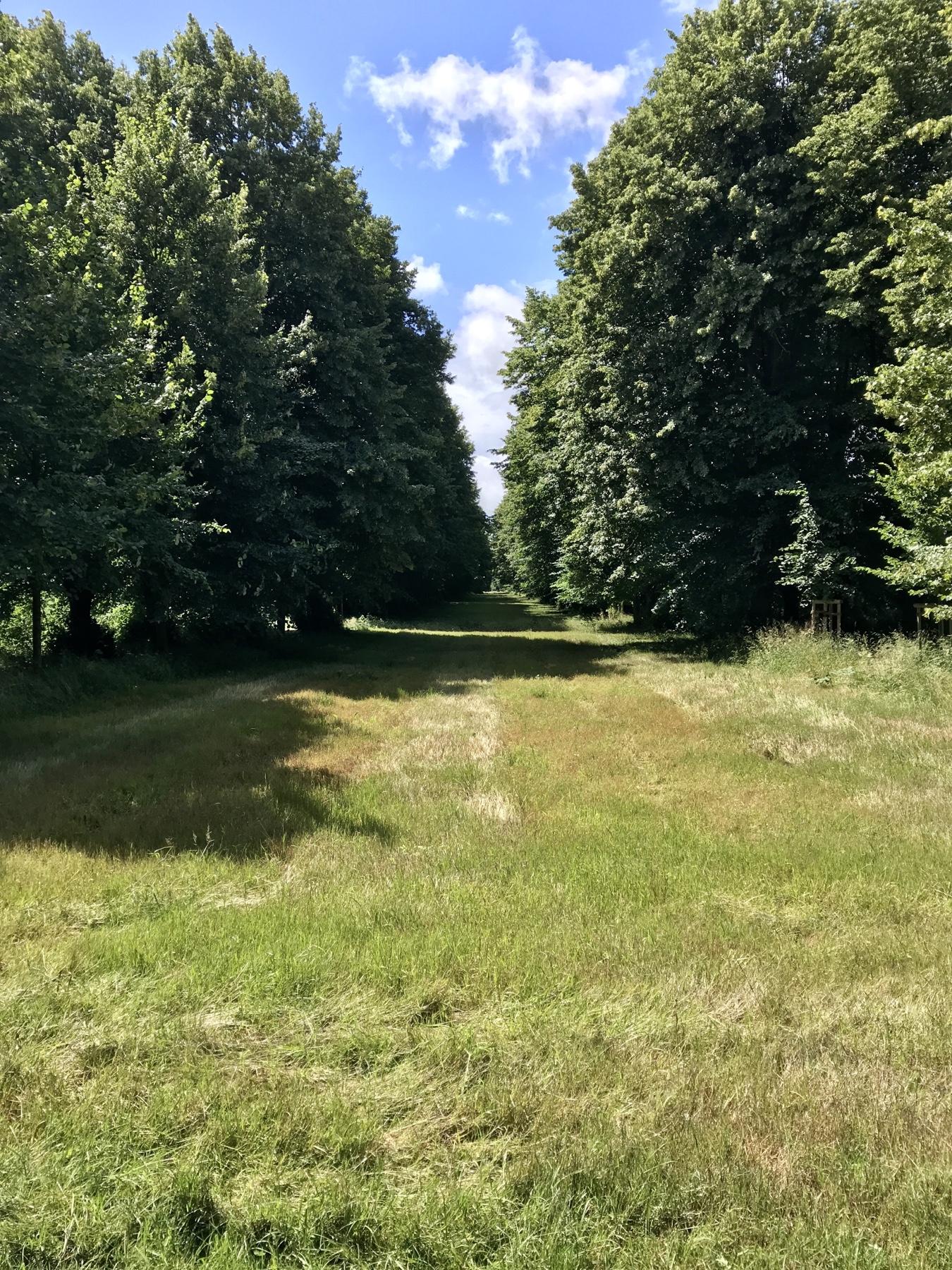 Jersbeker Park Barockgarten
