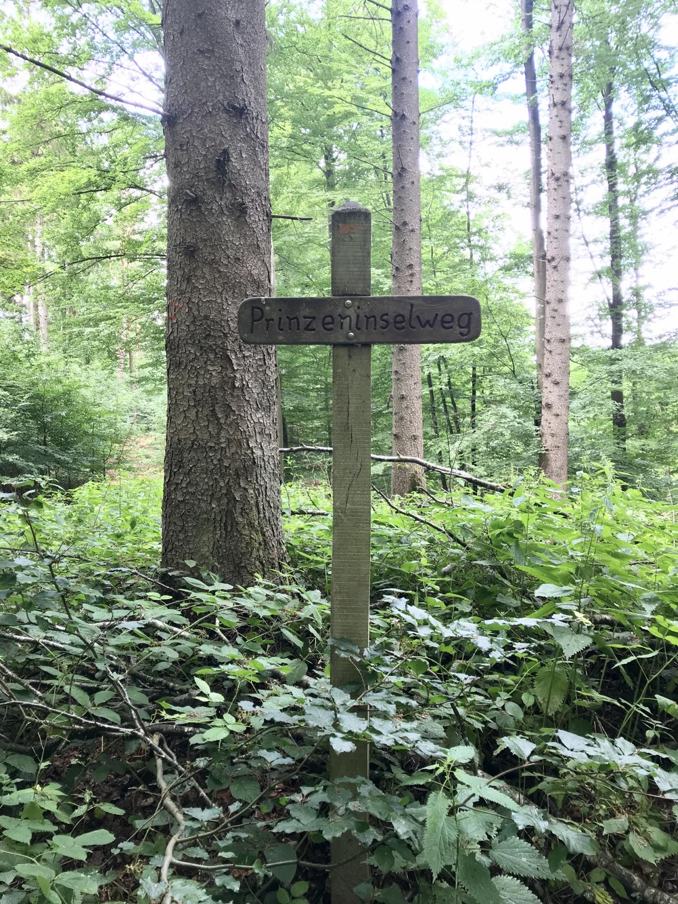 Wegweiser Prinzeninselweg im Wald vor Grabau, Stormarnweg Etappe 4 von Bargteheide nach Nütschau