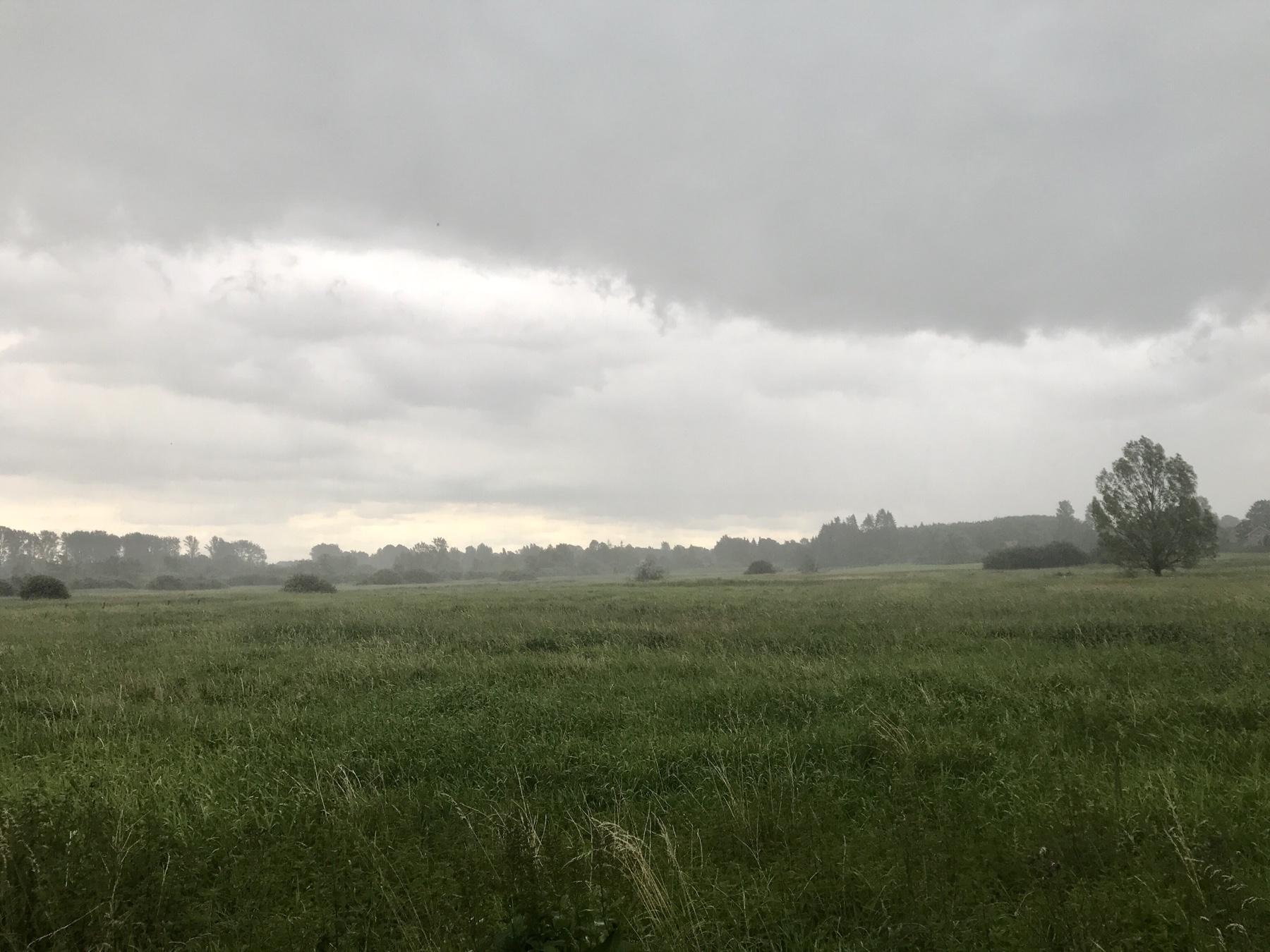 Regenwolken im Brenner Moor zwischen Kloster Nütschau und Bad Oldesloe