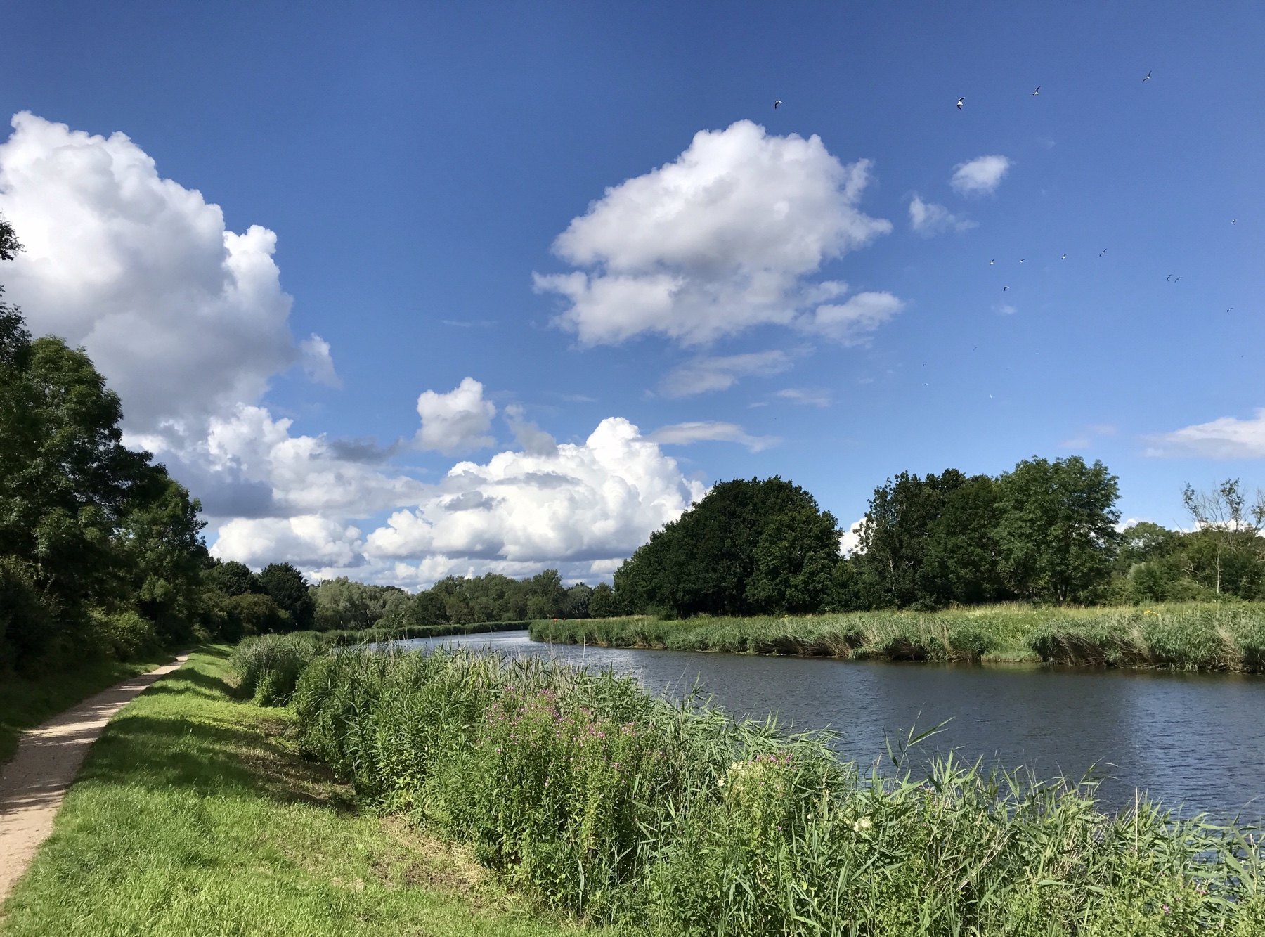 Blick auf den Elbe-Lübeck-Kanal, Stormarnweg Etappe 6