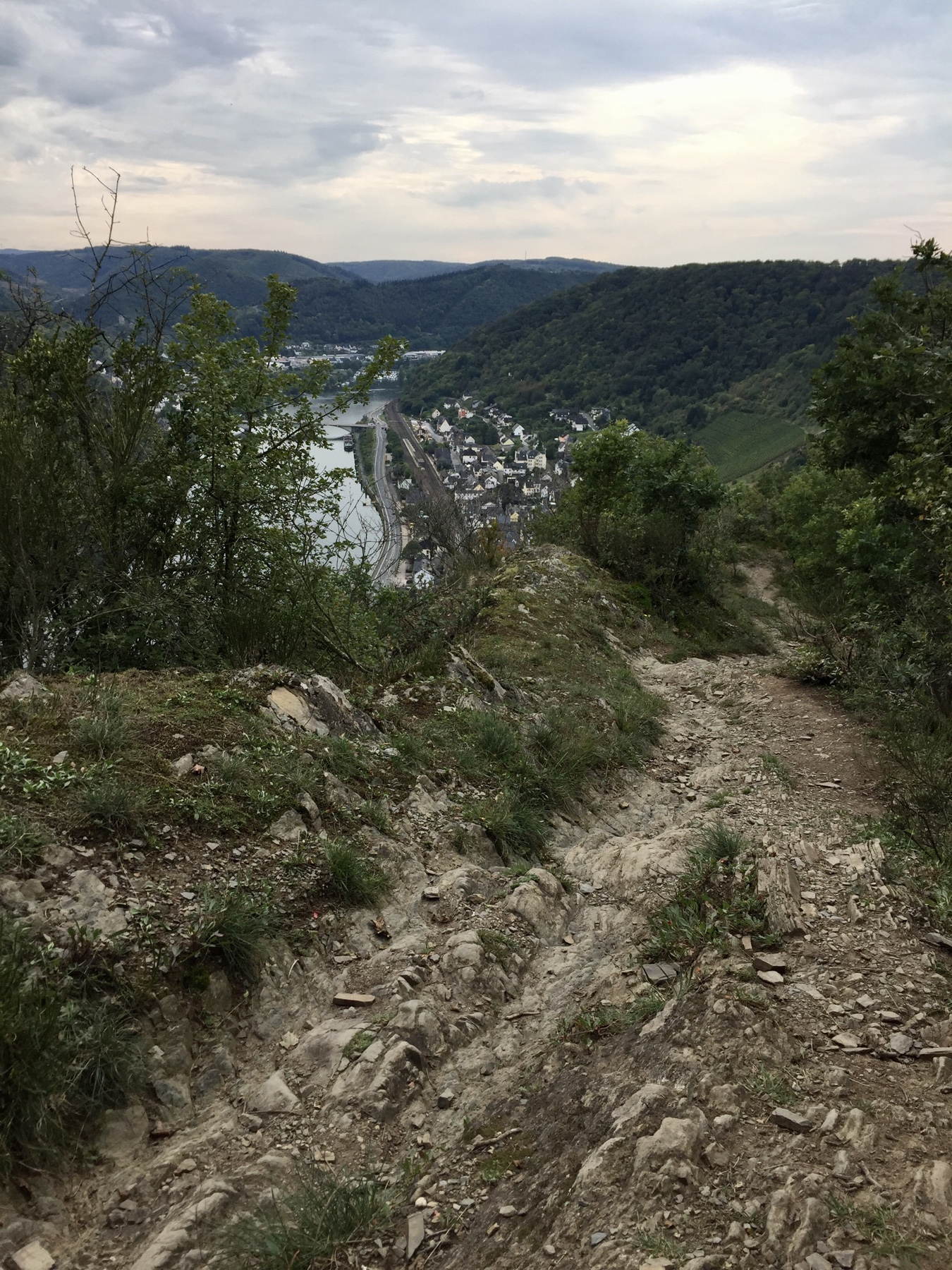 Mosel-Camino Etappe 2: Abstieg nach Treis-Karden von Kompes Köpfchen