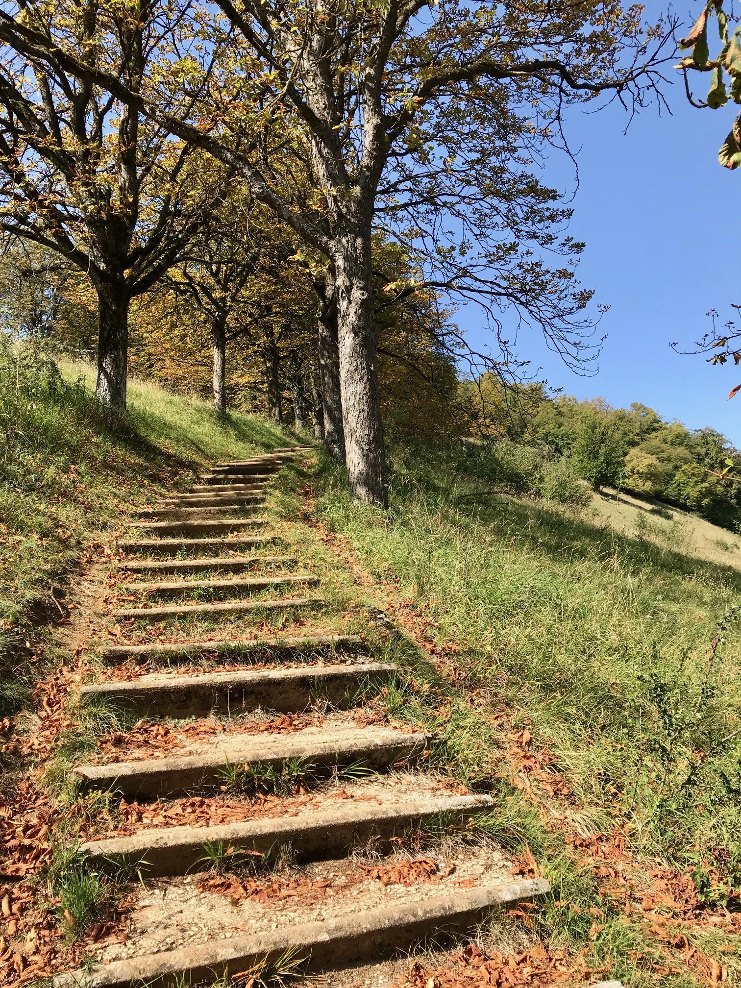 Auf dem Weg zum Albsteig HW, Etappe Harburg Mönchsdeggingen
