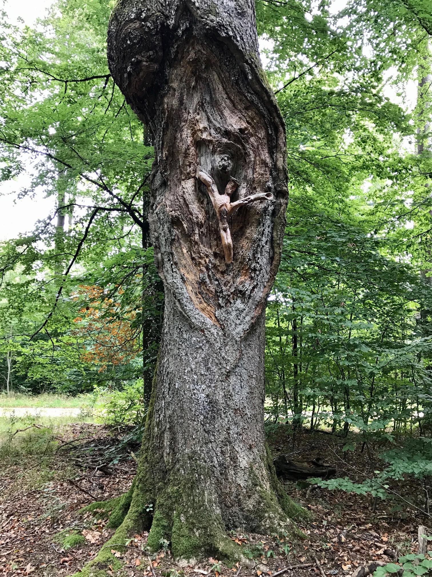 Jesus-Figur im Baumstamm, Albsteig HW1 Etappe 4 nach Heubach